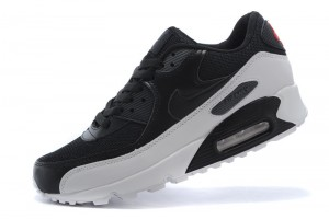 nike-air-max-90-shoes-for-men-185825